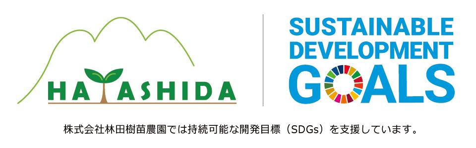 SDGs_title